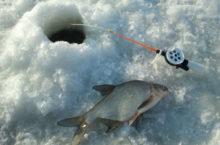 Зимние удочки для ловли на мормышку: типы и особенности