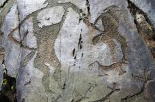 Республика Алтай. Редчайшие наскальные изображения юрты раннего средневековья нашли на Алтае