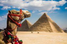 Как выбрать страховую компанию для покупки полиса, покрывающего туристические риски при поездке в Египет