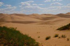 Монголия может превратиться в пустыню. Климат становится все более жарким и сухим