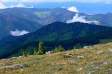 Горы Алтайского края: характеристика, геология, рельеф, полезные ископаемые, климат и гидрография