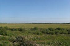Ишимская равнина